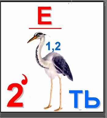 Готовое Домашнее Задание Решебник ГДЗ по Английскому языку